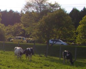 酪農��園大�� 国道12号線